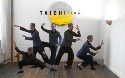 Tai Chi flow alapképzés – Chi Kung és Tai Chi képzés integrál szemléletben