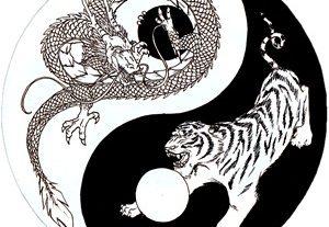 Sárkány chi kung és tai chi alapok tanfolyam
